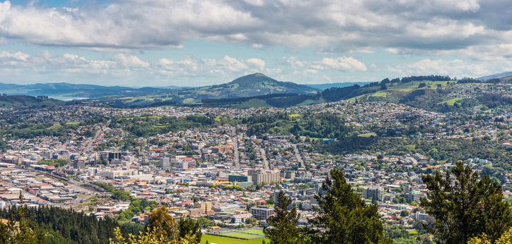 Dunedin View