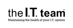 the I.T. team Logo